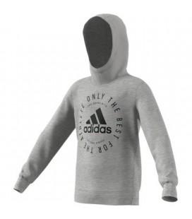 Adidas Youth Boy Hoodie