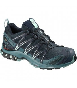 Hikingsko Dame Salomon XA PRO 3D GTX Dame L40672300